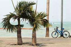 Peaceful tropical seascape with bike and palm trees. Bicycle on a beach road with nobody Royalty Free Stock Photography