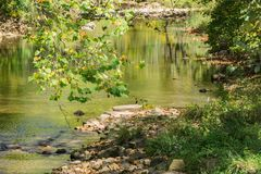 Peaceful Trout Stream. Potts Creek is a peaceful valley trout stream located Jefferson National Forest, Craig County, Virginia, USA Royalty Free Stock Photography