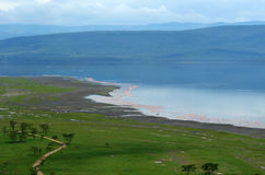 Peaceful view on the lake Nakuru Stock Images