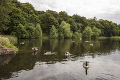 Peaceful view over lake at Nostell Priory Royalty Free Stock Photo