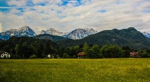Peaceful village. Calm village in spring time with yellow flower field in the front and alps mountain at background Stock Photography