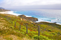 Peaceful Walk. Grassy colorful bluff looking over the ocean Royalty Free Stock Photography