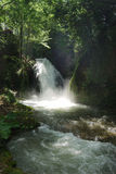 Peaceful waterfall. Landscape in Italy Stock Photos