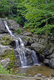 Peaceful waterfall. A multi-layered waterfall with flowing water surrounded with vegetation stock photos
