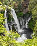 Peaceful waterfall. Waterfall at Burney State Park, California Royalty Free Stock Photo