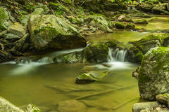 Peaceful Waterfall in the Forest Royalty Free Stock Photos