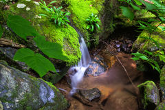 Peaceful Waterfall in the Forest. A horizontal view of a peaceful waterfall located in the forest of the Blue Ridge Mountains of Virginia Stock Photo