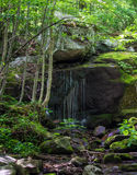 Peaceful Waterfall in the Forest. A vertical view of a peaceful waterfall located in the forest of the Blue Ridge Mountains of Virginia Stock Image