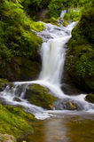 Peaceful Waterfall Scene. Serene waterfall over green mossy rocks Stock Image
