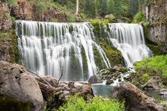 Peaceful waterfall. Waterfall in Shasta National Forest, California Stock Image