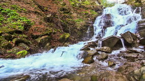 Peaceful Waterfall. Water falls over rocks through the dense fern undergrowth of a Carpathian forest stock video