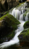 Peaceful waterfalls. A wonderful waterfall is running quiet between musks and vegetation Royalty Free Stock Photo