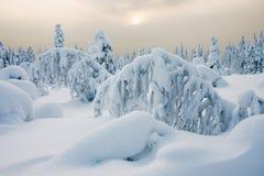 Peaceful winter day Stock Photos