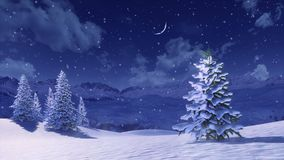 Snow covered fir tree at snowfall winter night 4K. Peaceful winter scenery with snow covered fir tree high in snowy mountains at winter night during snowfall stock illustration