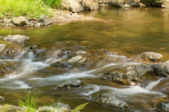Peaceful Woodland Stream Stock Image