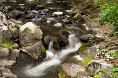 Peaceful Woodland Stream Stock Photo