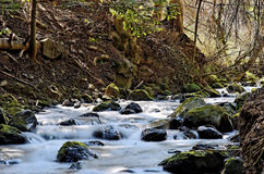 Peacefull river. Scenery of french mountains in spring Stock Photos