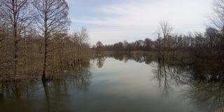 Peacefullmeer van kalmte en schoonheid royalty-vrije stock afbeelding