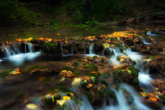 Peacefully flowing stream and autumn foliage Stock Image