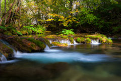 Peacefully flowing stream and autumn foliage Royalty Free Stock Photography