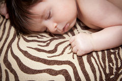 Peacefully Sleeping Royalty Free Stock Photography