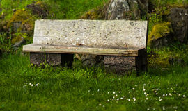 Peacful Bench. A Bench to rest and reflect in Victoria BC Royalty Free Stock Photography