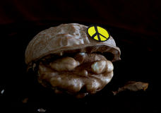 Peacful nut. Nut with hu,an faces and peace symbole Royalty Free Stock Images
