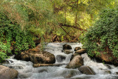 Peacful waterfall. Beautiful multi-layered waterfall between vegetation Stock Images