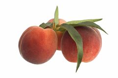 Peach. Es isolated on white background Royalty Free Stock Photography