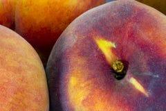 Peach Stock Photos
