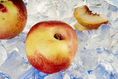 Peach. Fresh colored peach with ice Royalty Free Stock Photos