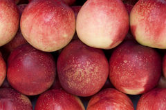 Peach. Close up fruit peach orange – detail Royalty Free Stock Photo
