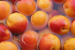 Peach,apricot Royalty Free Stock Photos