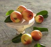 Peach apricot on the table summer fruit light window season close up fresh royalty free stock photos