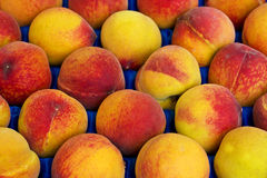 Peach background in the box Stock Photo