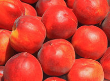 Peach Background Royalty Free Stock Photography