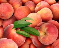 Peach Background With Juicy Fresh Fruit stock illustration