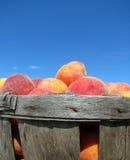 Peach Basket Stock Photos