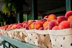 Peach Baskets Stock Image