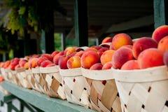 Peach Baskets Stock Image