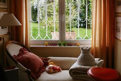 Peach and beige cozy room with teddy cat white vintage sofa and lamp, cute interior royalty free stock photo