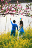 Peach blossoms with loving couple. In spring royalty free stock photography