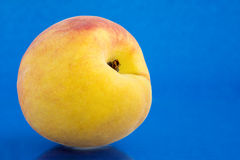 Peach on blue Stock Images