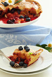 Peach and blueberry summer pie Royalty Free Stock Images