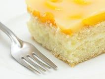 Peach cake. Home made peach cake with pudding Royalty Free Stock Photos