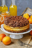 Peach cheesecake with chocolate topping Stock Image