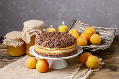 Peach cheesecake with chocolate topping Stock Photos