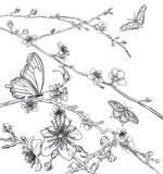 Butterflies Cherry Peach Blossom Flowers stock illustration