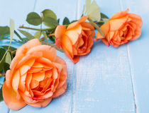 Peach colored roses on the table Royalty Free Stock Images