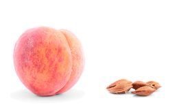 Peach with core isolated on a white Royalty Free Stock Photography